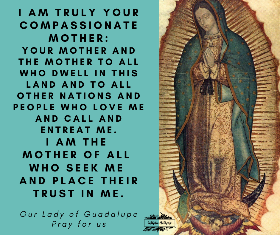 102500-our-lady-of-guadalupe-pray-for-us