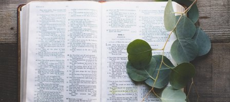 Reading & Meditation of the Daily Gospel