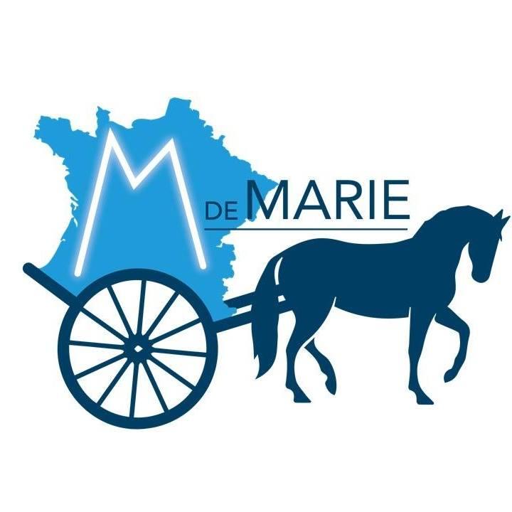 112623-le-m-de-marie-a-lyon