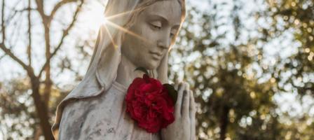 1 año acompañando a la Virgen María