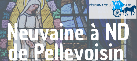 Neuvaine à Notre-Dame de Pellevoisin - M de Marie