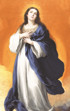 135159-the-great-novena-of-the-immaculate-conception