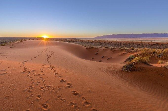 Jésus, donne-moi force et sagesse pour que je puisse venir à bout de ce désert