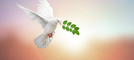 Chapelet du Saint Esprit pour le Salut des Âmes Sacerdotales