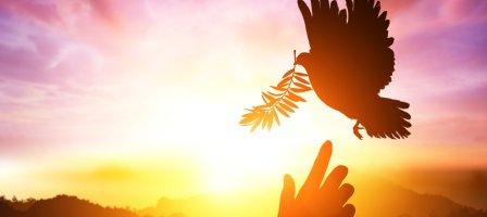 Vivre la Pentecôte avec le Père Daniel Ange