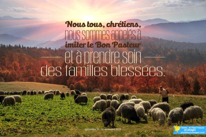 Nous tous, chrétiens, nous sommes appelés à imiter le Bon Pasteur et à prendre soin des familles blessées.