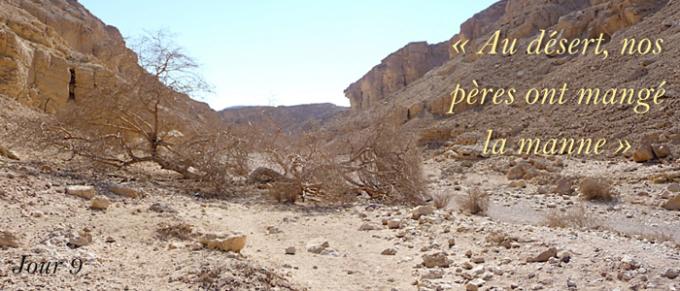 9e jour : Prier avec l'Evangile – Jean 6, 30
