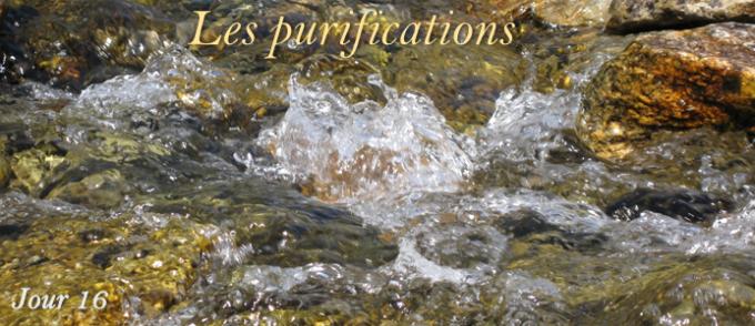 16e jour : Les purifications