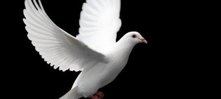 Prions Pour le réveil des paroisses
