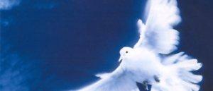 Prions Baptiste, un nouveau petit ange et sa famille