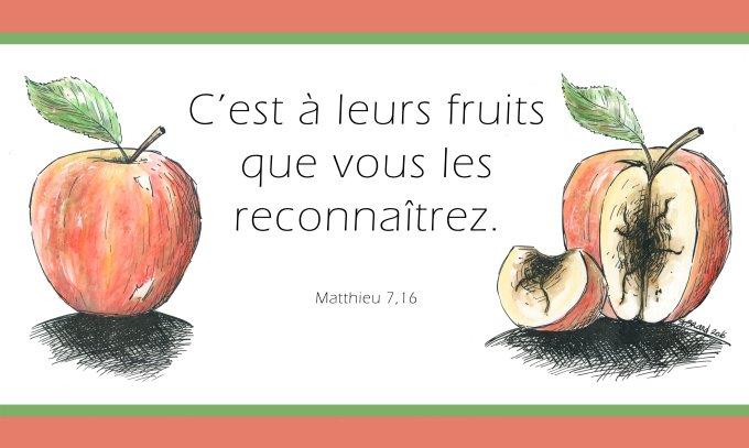 « C'est à leurs fruits que vous les reconnaîtrez.»