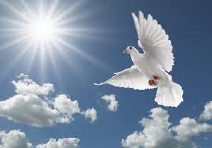 Prière à Dieu, l'Esprit planait sur les eaux.