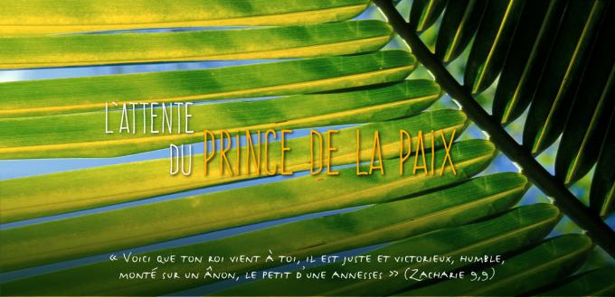 20 - Entrons dans l'Avent 2016 P.Marie-Eugène et les Prophéties Bibliques 31102?customsize=680