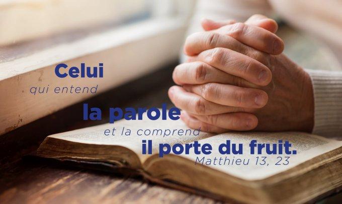 C'est celui qui entend la Parole et la comprend : il porte du fruit