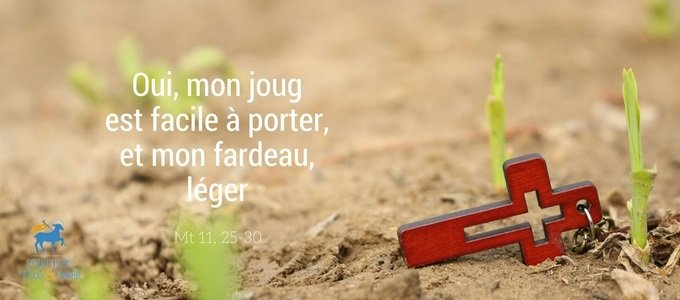 Homélie du 14e dimanche du Temps Ordinaire - Père Stéphane-Marie, sjm.