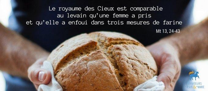 Homélie du 16e dimanche du Temps Ordinaire - Père Pierre-Marie