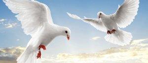 Neuvaine pour la Paix