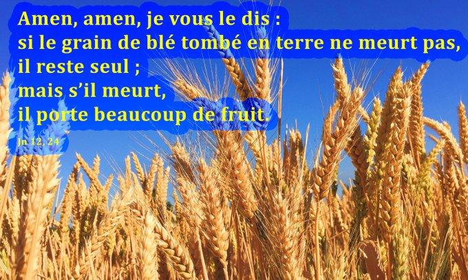 Si le grain de blé tombé en terre ne meurt pas, il reste seul