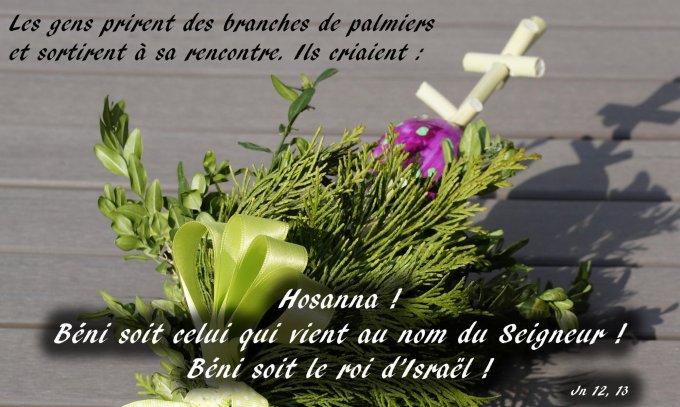 Hosanna ! Béni soit celui qui vient au nom du Seigneur !