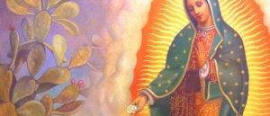 2019 - Novena a Nuestra Señora de Guadalupe
