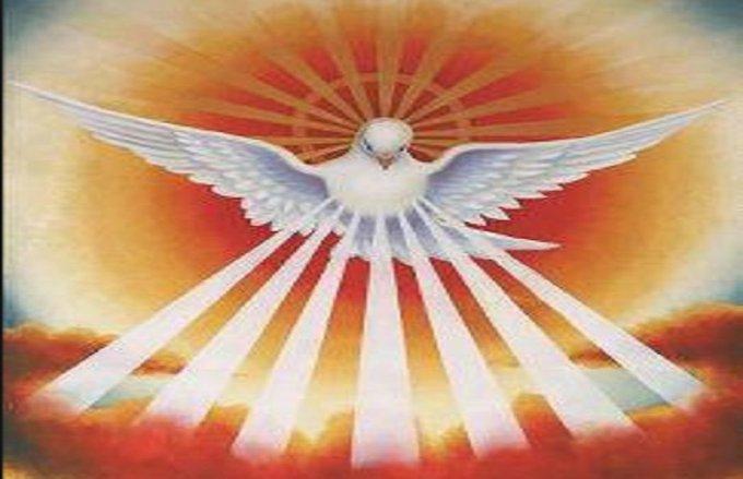 APPEL URGENT pour la Gloire de Dieu et le salut des âmes