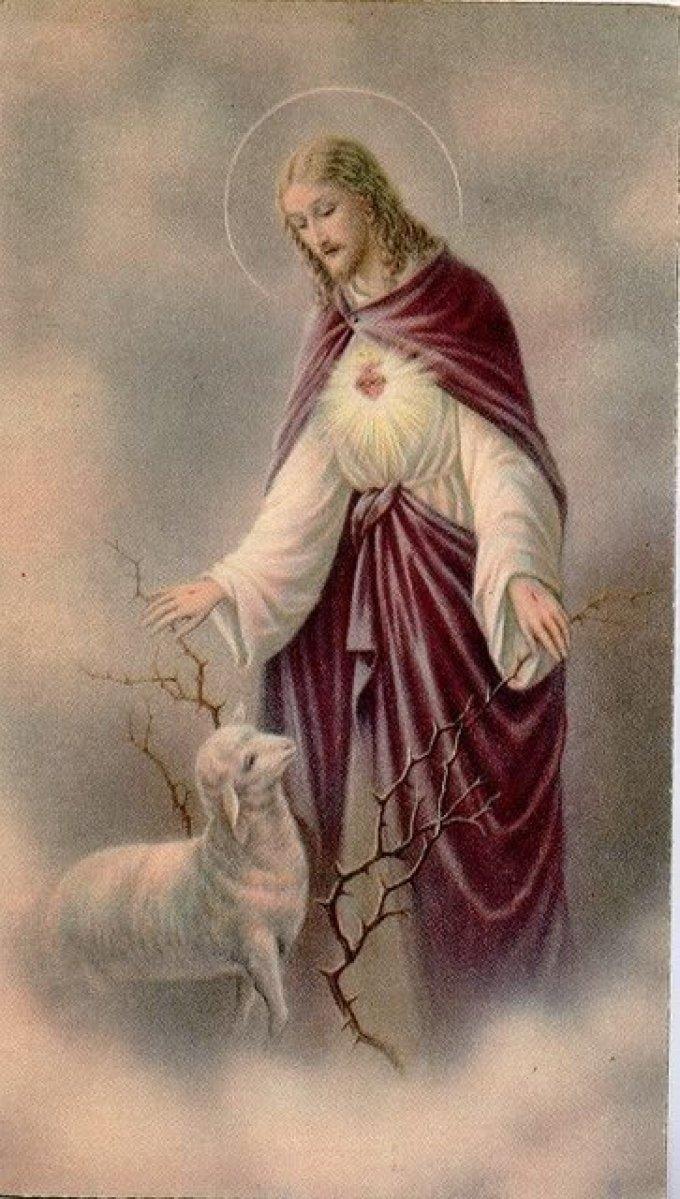 La Confiance Dans les Saintes Plaies de Jésus
