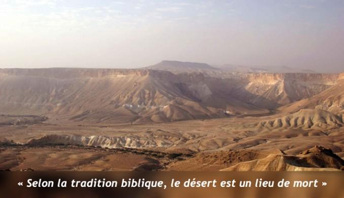 desert-palestine3
