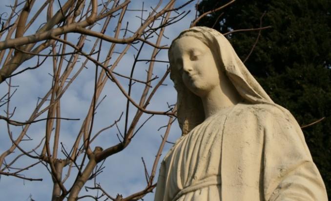80582-pour-le-synode-sur-la-famille-a-la-demande-du-pape
