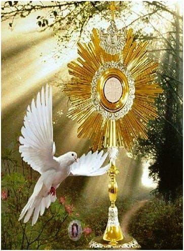 81138-la-colombe-du-tabernacle