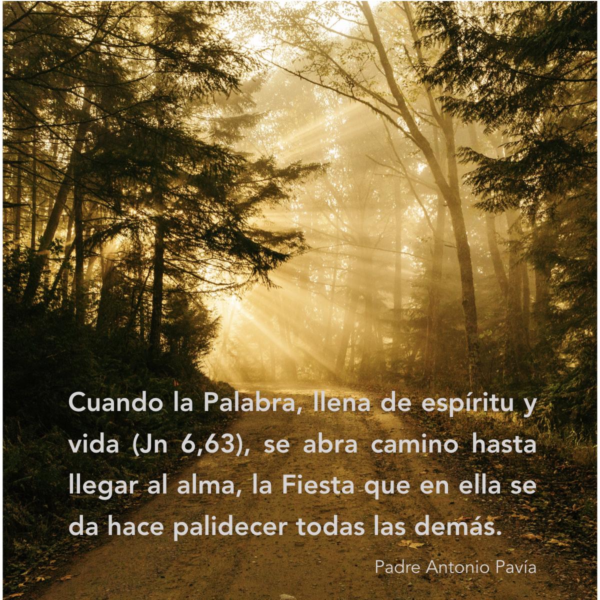 86341-toque-del-alma