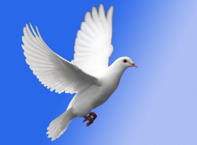 Prions pour la paix au Venezuela