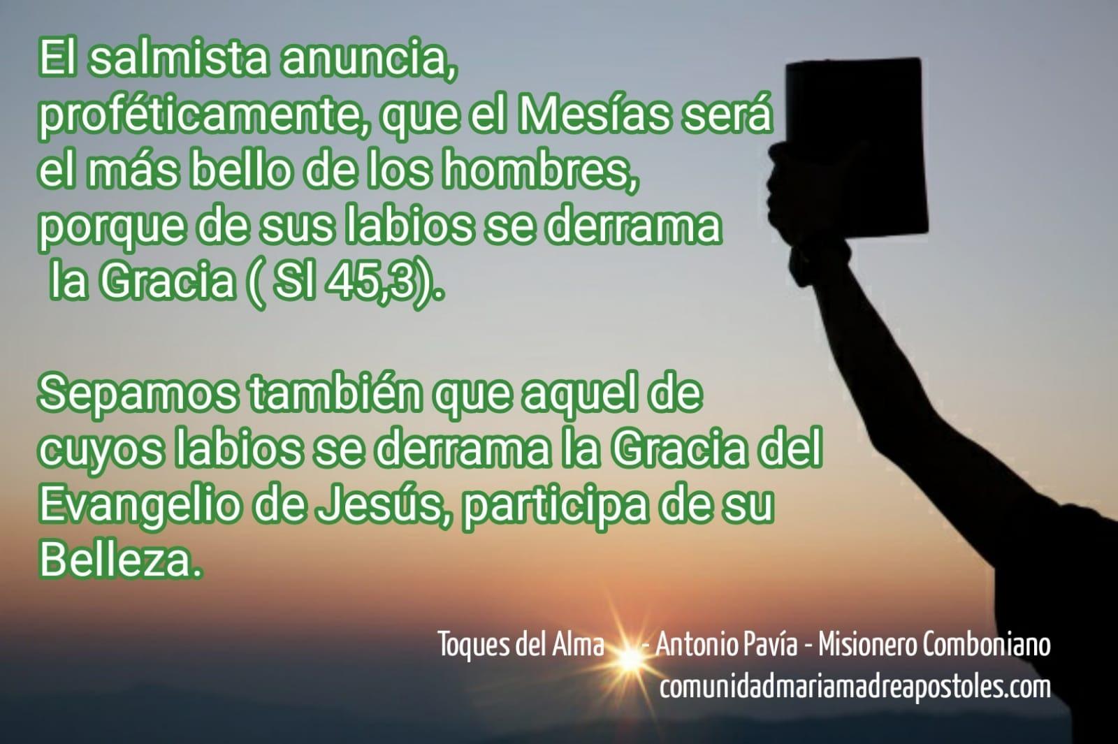 93422-toque-del-alma