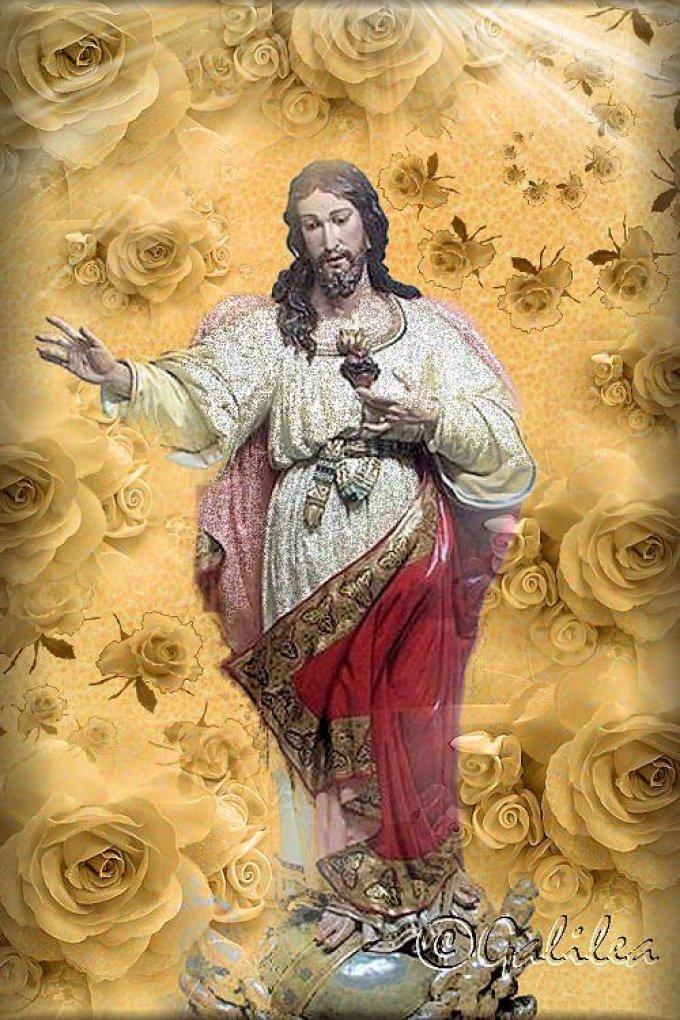 NE CRAIGNEZ PAS D'ÊTRE MISSIONNAIRE DE LA DEVOTION AUX SAINTES PLAIES!
