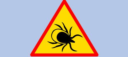 Prions pour les personnes atteintes par la maladie de Lyme