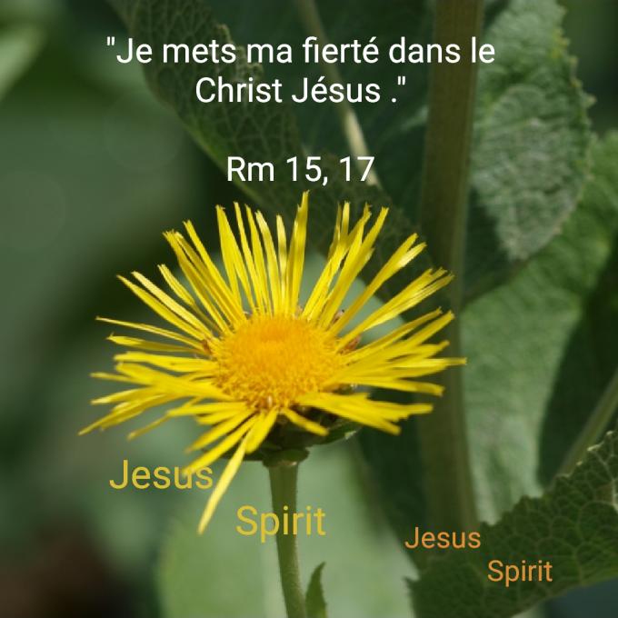 Je mets ma fierté en Christ