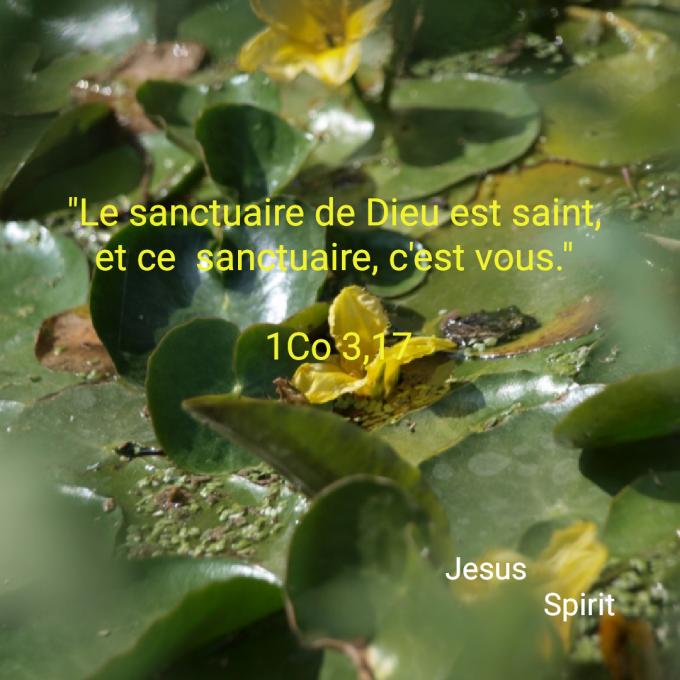 Le sanctuaire de Dieu est saint, et ce  sanctuaire, c'est vous.
